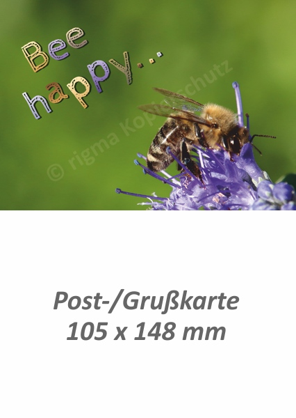 rigma-bee-happy-pk-272