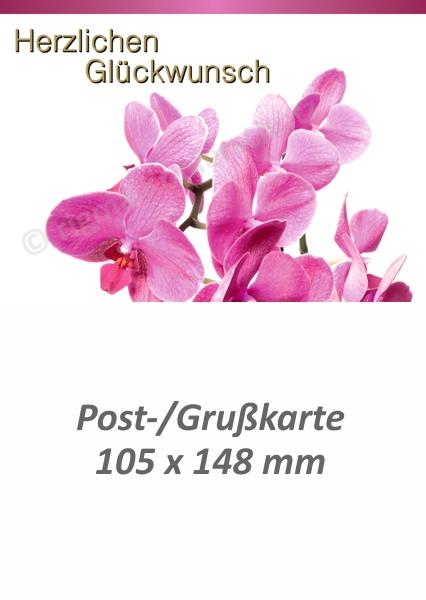 rigma-herzlichen-glueckwunsch-pk-273